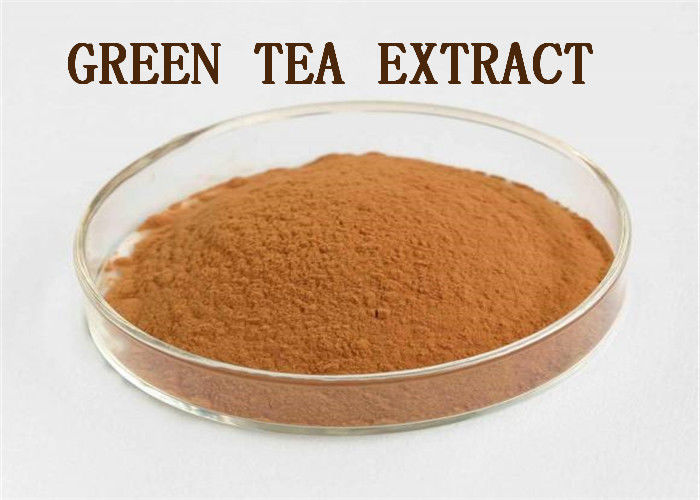 Brown Natural Supplement Raw Materials Polyphenols Green Tea Extract Powder